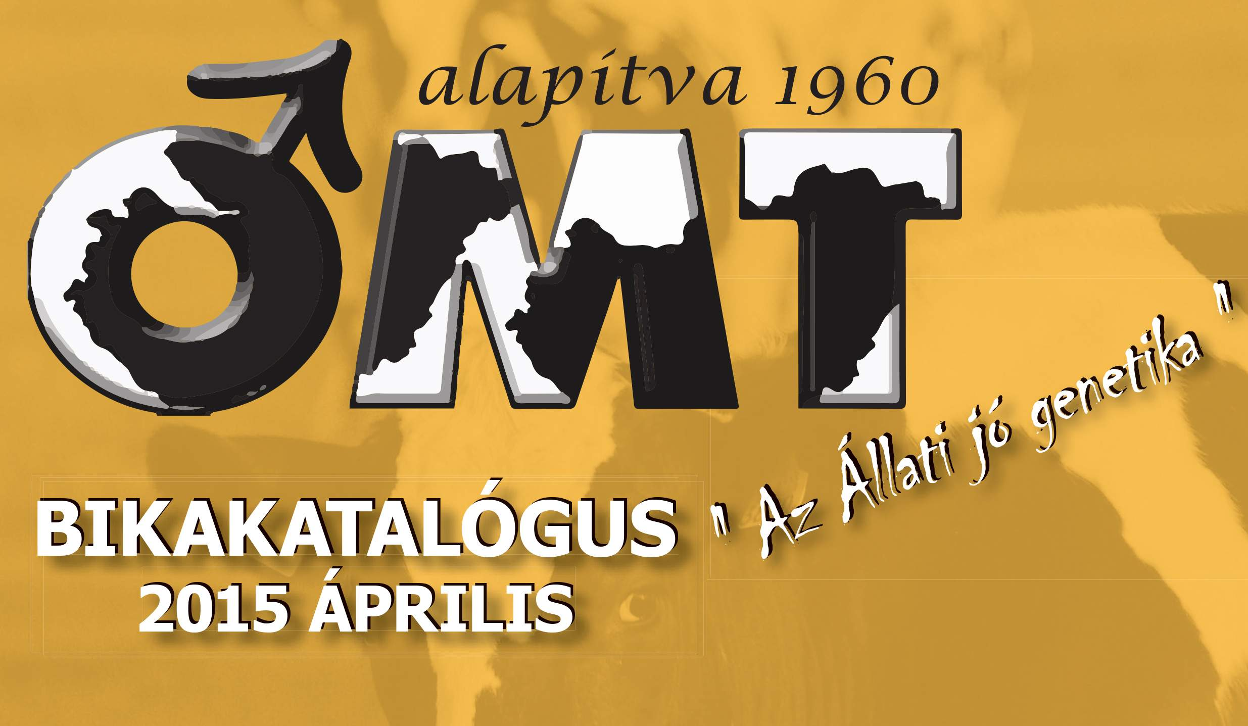 OMT Bikakatalógus 2015.április