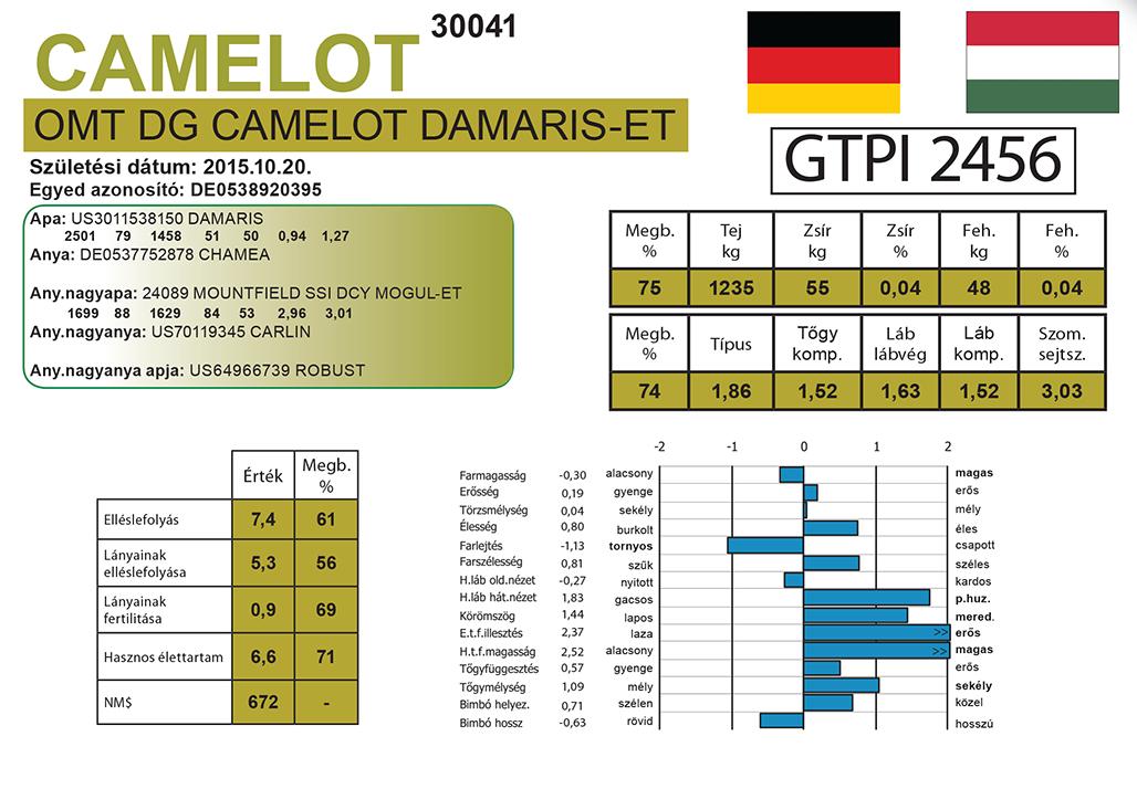 OMT DG CAMELOT DAMARIS-ET