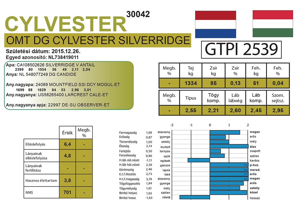 OMT DG CYLVESTER SILVERRIDGE-ET