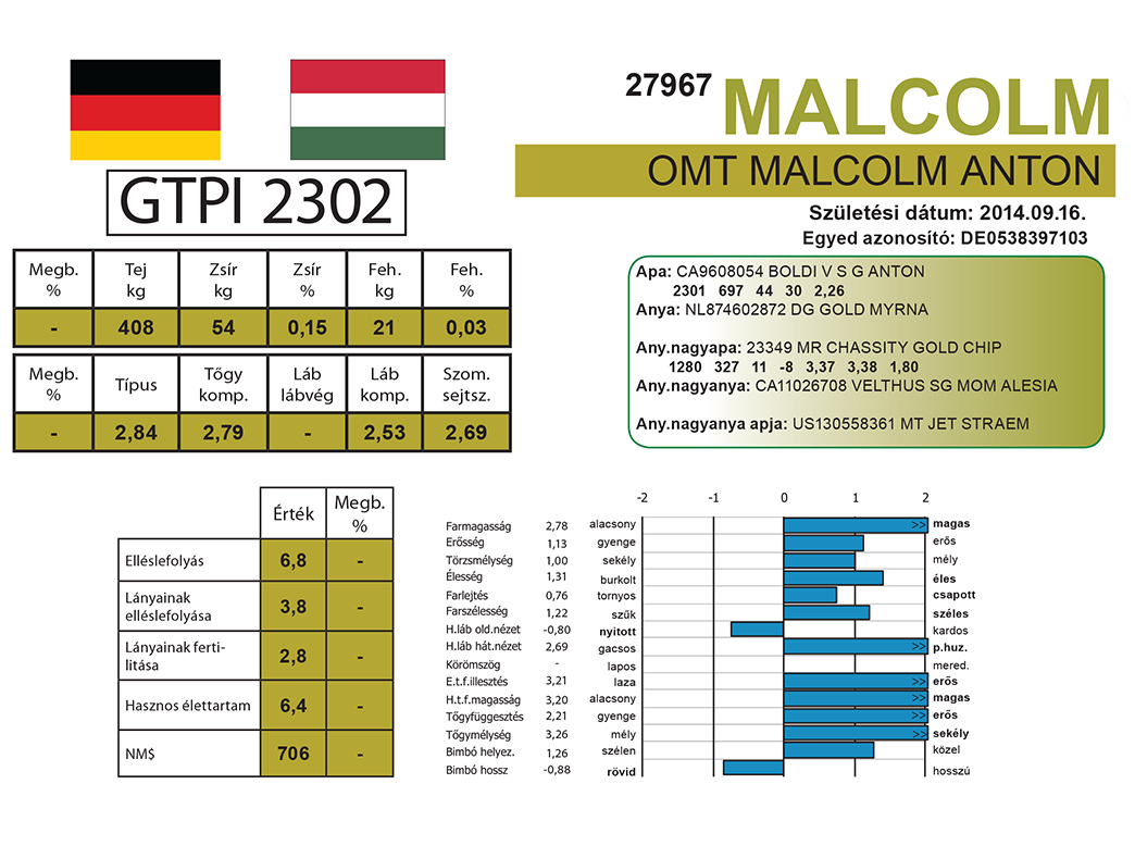 OMT Malcolm Anton